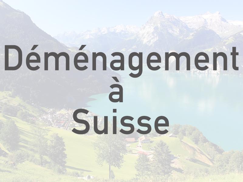 Déménagement à Suisse
